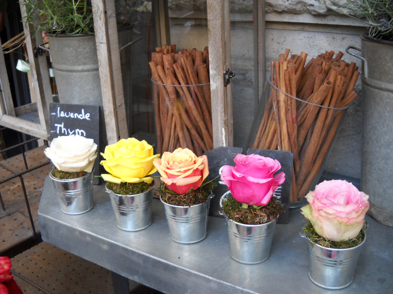 flowers in a row in shop paris 2010
