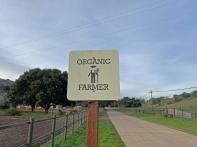 organic farmer sign folded hills