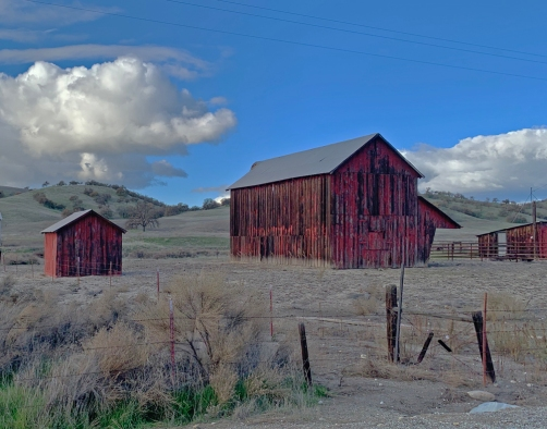 vineyard canyon barn
