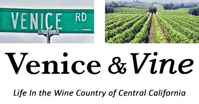 Life In Central California Wine Country | Venice & Vine